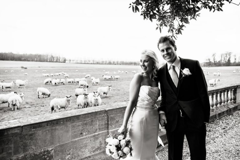 bride and groom with sheep in field in background