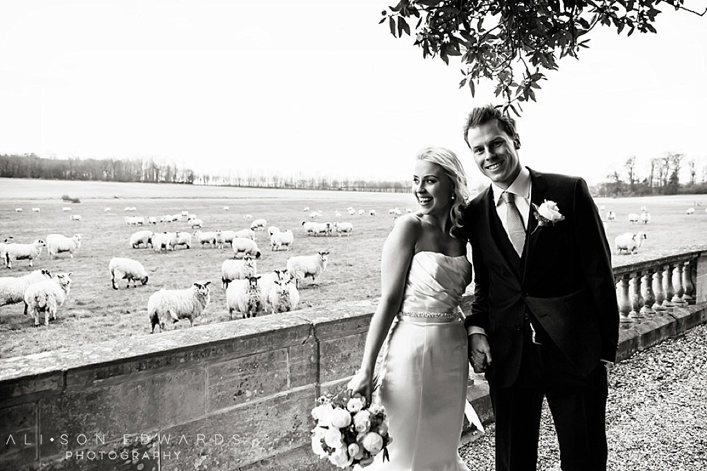 bride and groom dont like posing in gardens with sheep in background