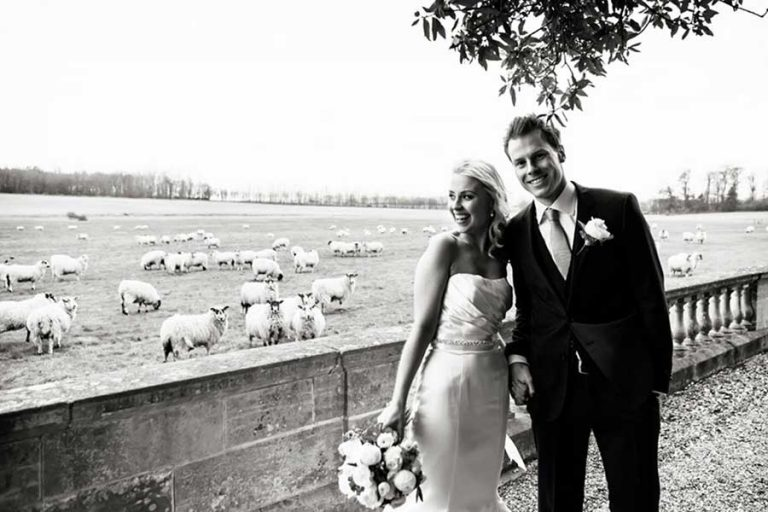 bride and groom at Prestwold Hall sheep in fields by Nottingham wedding photographer