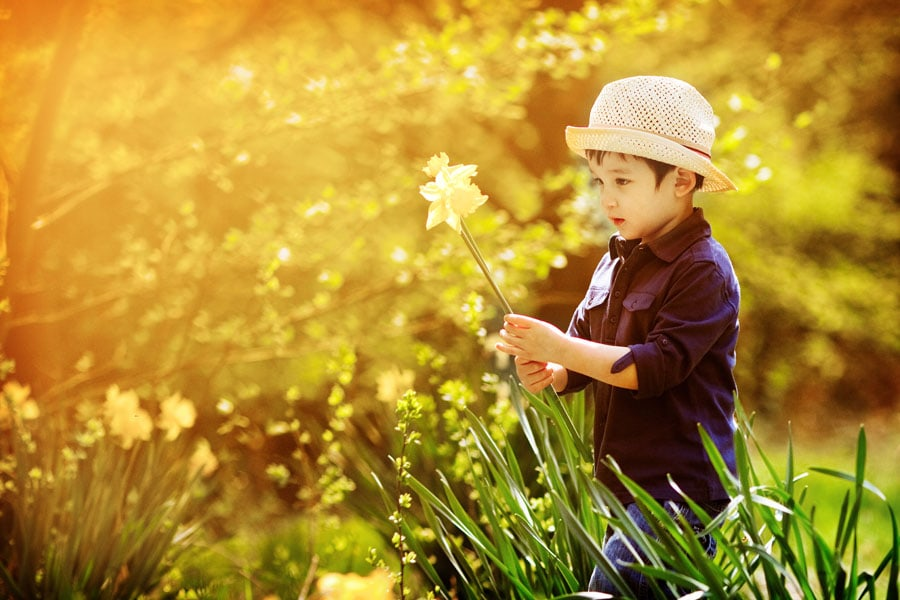 family photography nottingham boy holding daffodil wearing straw hat
